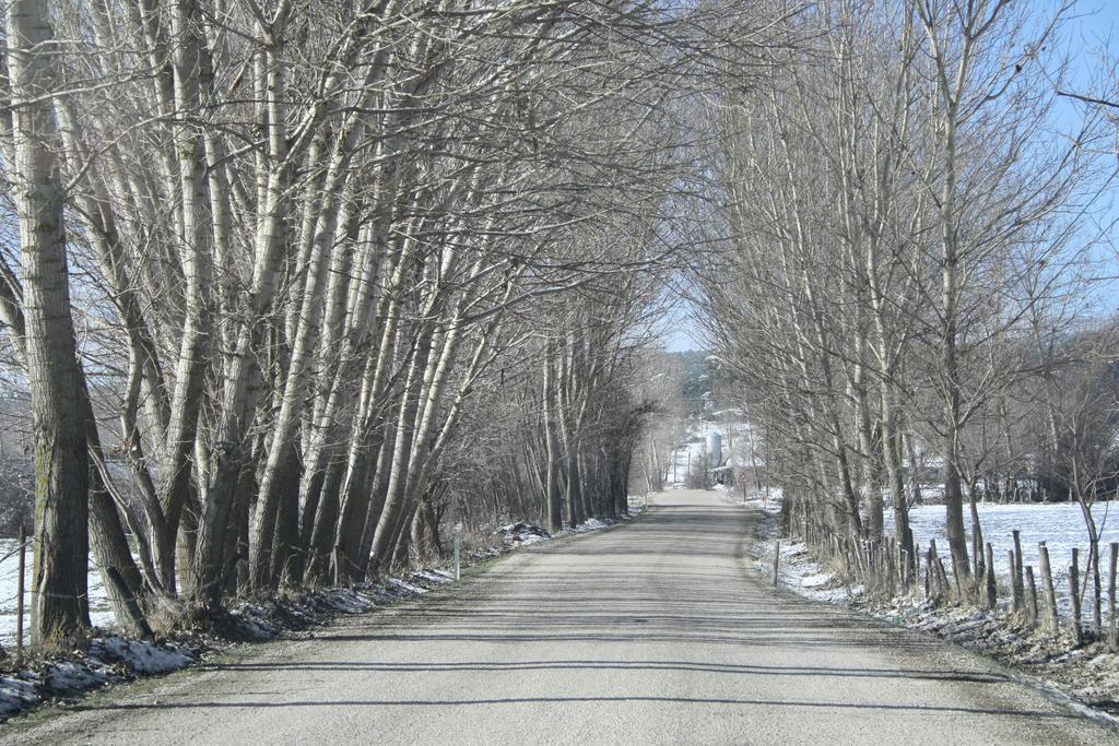 Hüsamettindere Ekomüze Köyü Bahar Fotoğrafları